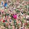 Oslo: 'Kinderen van de regenboog'
